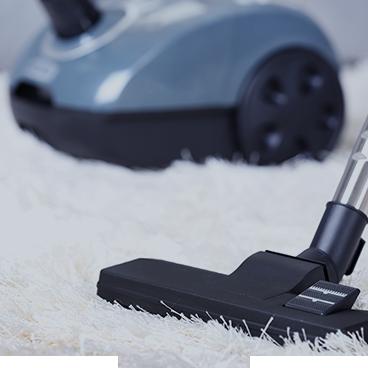 Clean and Vacuum floors